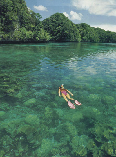 CLASS - MAGAZINE TEARSHEET -  Rock Islands -  Palau, Micronesia, Pacific Ocean ~ id# aquawoman GB013