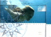 aquawoman ~ BLAUE PARADIESE - Galapagos I - Stefanie Voigt - laste episode Feb. 15th 2004 - on VOX TV /Germany ------ CLICK IMAGE TO SEE VIDEO