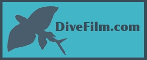 Divefilm.com is a website dedicated to showcasing underwater film prepared specifically for the internet. We are particularly interested in emphasizing the artistic aspects of underwater filmmaking.